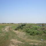 Teren agricol 43300 mp, Bolintin-Deal, Giurgiu - Teren de vanzare, Teren extravilan