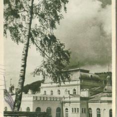 VATRA DORNEI - Carte Postala Transilvania dupa 1918, Circulata, Fotografie
