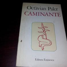 OCTAVIAN PALER - CAMINANTE {1980}/TD