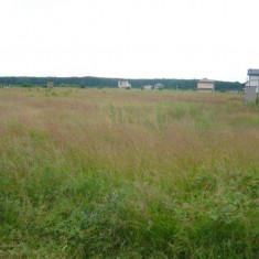 Teren 1008 mp si drum acces 241.52 mp, Balotesti, Ilfov - Teren de vanzare, Teren intravilan