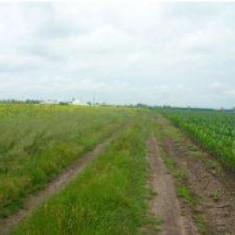 Teren 2375 mp, strada Drumul Dealul Viei, Bucuresti, Teren intravilan