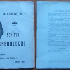 Em. Grigorovitza, Schitul Cerebucului, Povestire din trecutul Moldovei, 1908 - Carte Editie princeps