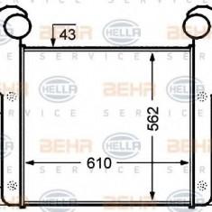 Intercooler, compresor DAF 95 FA 95.310 - HELLA 8ML 376 776-671 - Intercooler turbo
