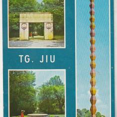 Bnk cp Targu Jiu - Vedere - necirculata- marca fixa - Carte Postala Oltenia dupa 1918, Printata