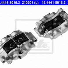 Etrier frana - ATE 13.4441-8016.3 - Arc - Piston - Garnitura Etrier REINZ
