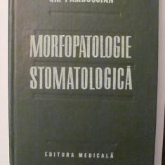 PVM - Gr. PAMBUCCIAN