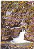 Bnk cp Stana de Vale - Cascada Iodalina - necirculata - marca fixa, Printata