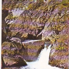 Bnk cp Stana de Vale - Cascada Iodalina - necirculata - marca fixa - Carte Postala Crisana dupa 1918, Printata