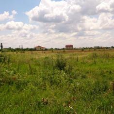 5 loturi de teren, Ploiesti, Prahova - Teren de vanzare, 16831 mp, Teren intravilan
