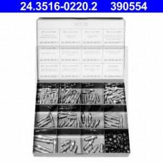 Sortiment, suruburi aerisire - ATE 24.3516-0220.2