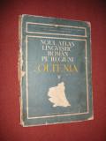 NOUL ATLAS LINGVISTIC ROMAN PE REGIUNI. OLTENIA VOL. V