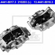 Etrier frana - ATE 13.4441-8018.3 - Arc - Piston - Garnitura Etrier REINZ