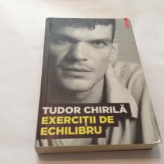 Exercitii De Echilibru - Tudor Chirila, rf12/4 - Carte Monografie