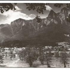 @carte postala(ilustrata)-ARAD-Baile Moneasa-vedere din parc - Carte postala tematica, Circulata, Fotografie