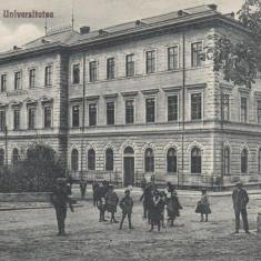 BUCOVINA, CERNAUTI, UNIVERSITATEA - Carte Postala Bucovina dupa 1918, Necirculata, Printata