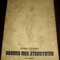 Horia Zilieru - Doamna mea, eternitatea (1987), poezii, editie princeps