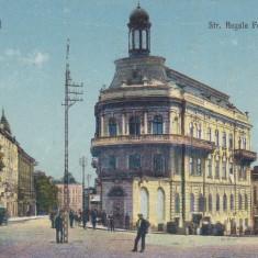 BUCOVINA, CERNAUTI, STRADA REGELE FERDINAND I - Carte Postala Bucovina dupa 1918, Necirculata, Printata