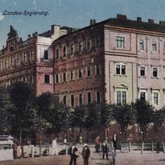 BUCOVINA, CERNAUTI, GUVERNUL TARII - Carte Postala Bucovina dupa 1918, Necirculata, Printata