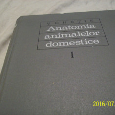Anatomia animalelor domestice- vol I- aparatul locom. - v. ghetie-1971 - Carte Medicina veterinara