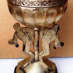 5.088 CUPA SCHI LOCUL II CONCURS INTERNATIONAL JUBILIAR 1961 20, 5cm - Medalii Romania