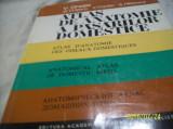 Atlas de anatomie a pasarilor domestice - v. ghetie- 1976