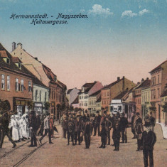 SIBIU, STRADA CISNADIEI, MAGAZINE, ANIMATA - Carte Postala Transilvania 1904-1918, Necirculata, Printata