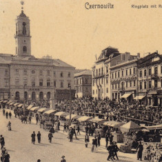 BUCOVINA, CERNAUTI, PIATA SI PRIMARIA, MAGAZINE, TUTUNGERIE, CARUTE, ANIMAT - Carte Postala Bucovina 1904-1918, Circulata, Printata
