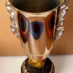 5.086 CUPA CAMPION EUROPEAN 1971 IGLS AUSTRIA BOB 4 LOCUL I ION ZANGOR 39cm - Medalii Romania