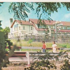 Bnk cp Botosani - Motel Stejarul - necirculata - Carte Postala Moldova dupa 1918, Printata