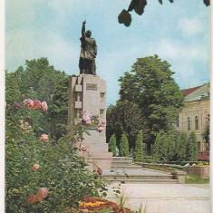 Bnk cp Bistrita - Statuia Andrei Muresanu - necirculata, Printata