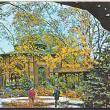 Bnk cp Baile Buzias - Vedere - necirculata - Carte Postala Banat dupa 1918, Printata