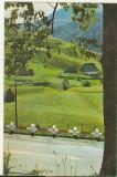 Bnk cp Jud Bistrita-Nasaud- Pasul Bargau - necirculata, Printata