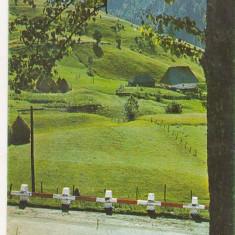 Bnk cp Jud Bistrita-Nasaud- Pasul Bargau - necirculata - Carte Postala Transilvania dupa 1918, Printata