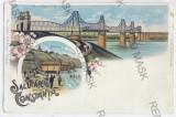 2798 - CONSTANTA, Cernavoda Bridge, Litho - old postcard - unused, Necirculata, Printata
