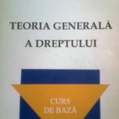 TEORIA GENERALA A DREPTULUI -I. DOGARU -D. C. DANISOR -GH. DANISOR (1999) - Carte Teoria dreptului
