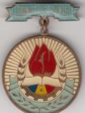 Insigna pioniereasca Pionier de frunte (plastifiata, 31 mm diamtru), Romania de la 1950