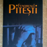 Virgil Ierunca - Fenomenul Pitesti - Filosofie