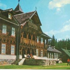SIBIU PALTINIS - Carte Postala Transilvania dupa 1918, Circulata, Fotografie