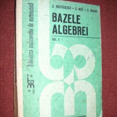 BAZELE ALGEBREI (VOL 1) - C.NASTASESCU, C, NITA, C.VRACIU - Carte Matematica