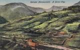 SALUTARI DIN MARAMURES . VALEA BORSA, Necirculata, Printata