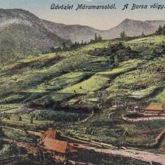 SALUTARI DIN MARAMURES . VALEA BORSA - Carte Postala Maramures dupa 1918, Necirculata, Printata