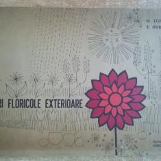 M. Topor, E. Dobrota - Amenajari floricole exterioare - Carte gradinarit