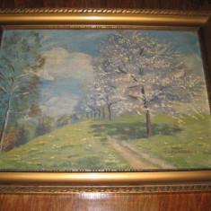 Peisaj mic vechi F.Mamfas- ulei_placaj, perioada 1900-1930. Stare buna. - Pictor strain, An: 1920, Peisaje, Realism