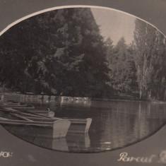 CRAIOVA, PARCUL BIBESCU - Carte Postala Oltenia dupa 1918, Necirculata, Fotografie