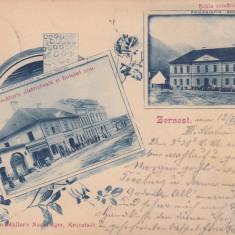 ZARNESTI BRASOV JUDECATORIE DISTRICTUALA SI HOTELUL NOU SCOALA ROMANA  CIRC.1902, Circulata, Printata