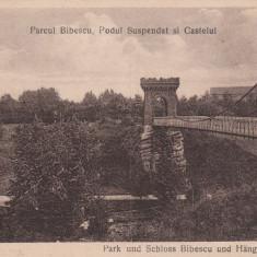 CRAIOVA PARCUL BIBESCU PODUL SUSPENDAT SI CASTELUL - Carte Postala Oltenia dupa 1918, Necirculata, Printata