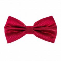Papion rosu barbati online - Papion Barbati