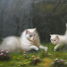 Beno Boleradszky - Pisici in iarba