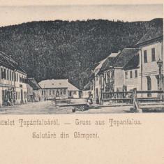 CAMPENI, SALUTARE DIN CAMPENI, CLASICA - Carte Postala Transilvania pana la 1904, Necirculata, Printata