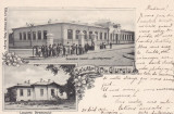 GIURGIU , SALUTARI DIN GIURGIU , GIMNAZIUL CLASSIC  ION MAIORESCU , CLASICA 1902, Circulata, Printata